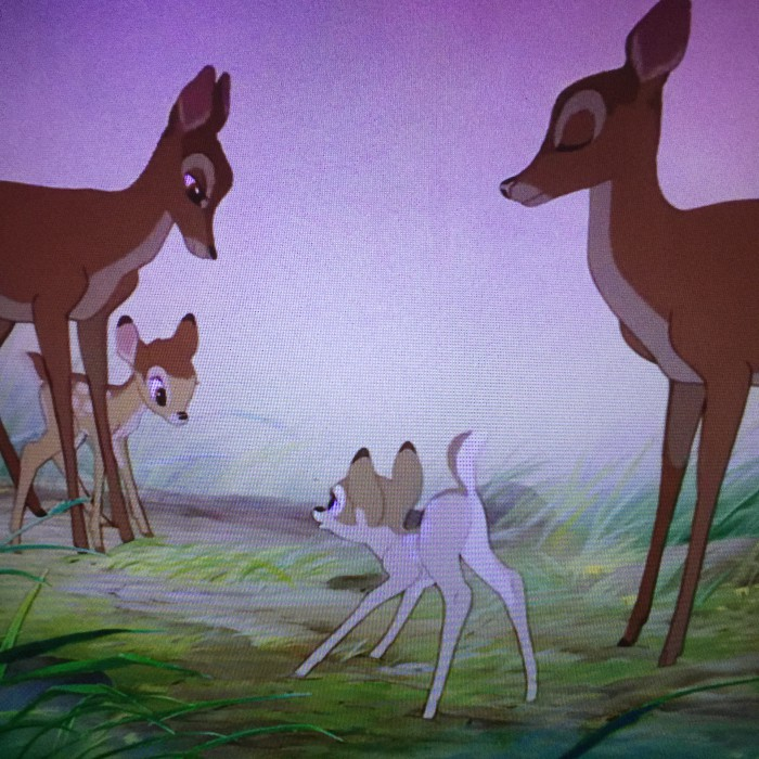 The deer move very organically, especially in this sequence where we meet Bambi's love for the first time.