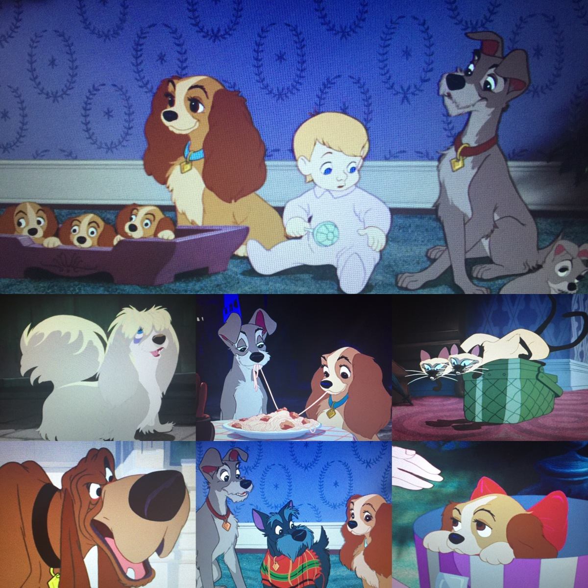 Vault Disney 15 Lady And The Tramp